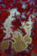 Red Moss Agate Slab