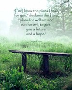 Jeremiah 29:11 For I know the Plans I have for You (Wooden Bench)