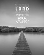 Jeremiah 29:11 For I know the Plans I have for You (Lake House Black & White)