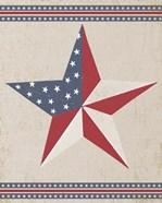 Barn Star - White