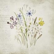 Wild Flowers Three