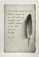 John 6:35 I am the Bread of Life (Gray)