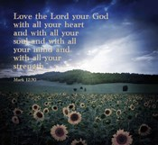 Mark 12:30 Love the Lord Your God (Sunflowers)