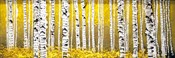 Panor Aspens Yellow Floor