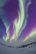 The Northern Lights in Churchill, Manitoba, Canada