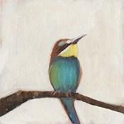 Bird Profile II