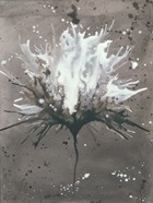 Splash of Flowers I