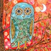 Funky Little Owl