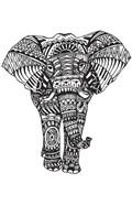 Elephant Zen