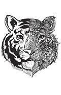 Tiger Half And Half