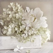 White Flower Book