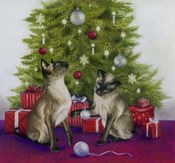 Christmas Siamese Cats
