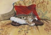Comfy Slipper