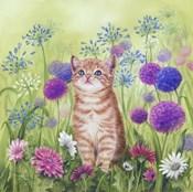 Ginger Kitten In Flowers