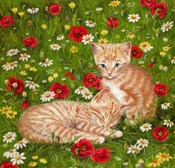 Ginger Kittens In Red Poppies