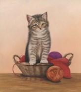Kitten And Wool Basket