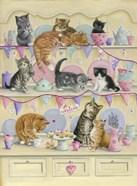 Kittens On Dresser