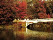 Fall at Bow Bridge