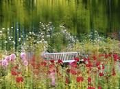 Rose Garden Impressions