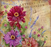 Letters from the Garden I