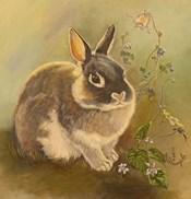 Rabbit In Columbine