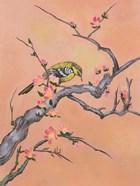 Asian Bird 1