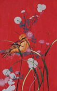 Bird On Red