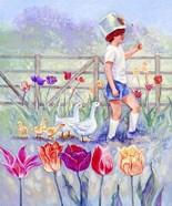 Tulips Garden Gates