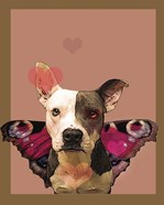 Butterfly Dog 2