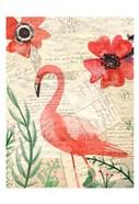 Postcard Flamingo 2