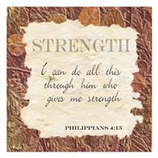 Strength ver B