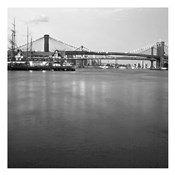 Brooklyn bw