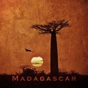 Vintage Baobab Trees at Sunset in Madagascar, Africa