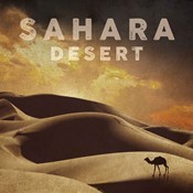 Vintage Sahara Desert with Sand Dunes and Camel, Africa
