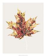 Fall Mosaic Leaf III