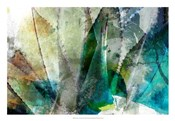 Agave Abstract II