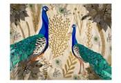Poinsettia Peacocks