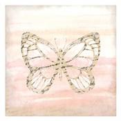 Butterfly Script 1