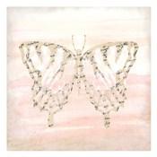 Butterfly Script 3