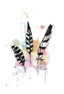 Calm Three Feathers