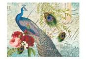 Peacock 110