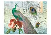 Peacock 111 Green