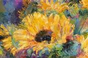 Blue Sunflowers