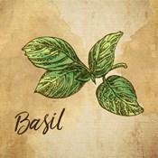 Basil on Burlap