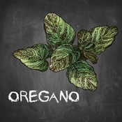 Oregano on Chalkboard