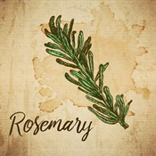 Rosemary on Burlap