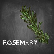 Rosemary on Chalkboard