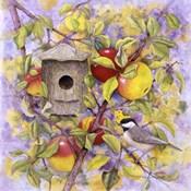 Chickadee & Apples