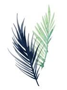 Untethered Palm III