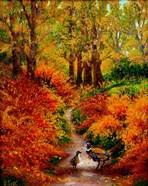 Pheasant Road